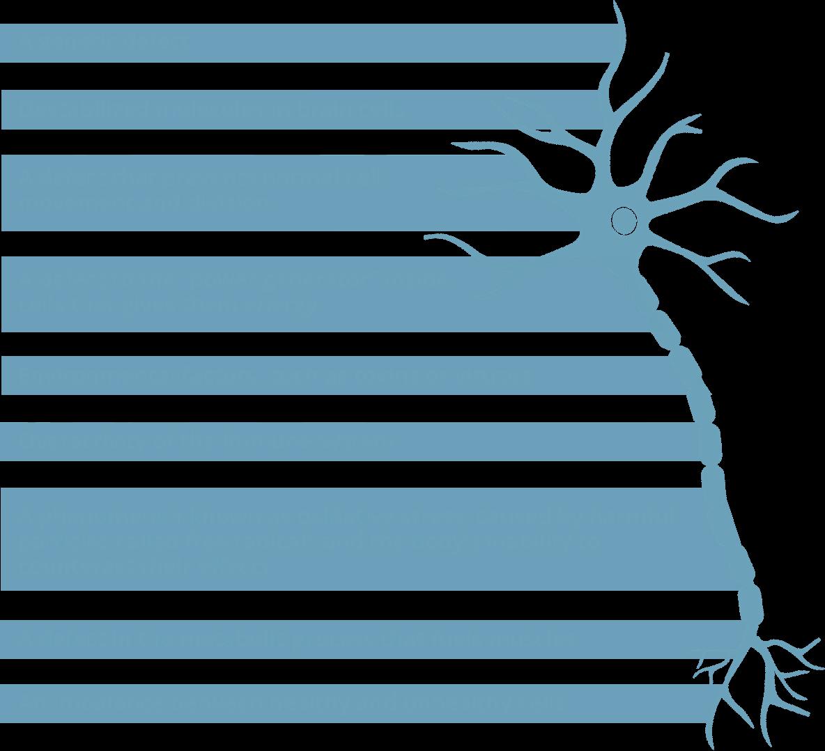 Factors contributing to motor neuron loss