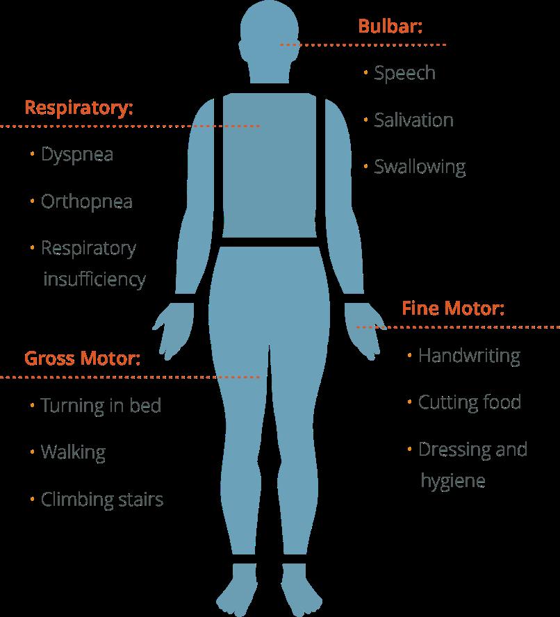 ALS types chart